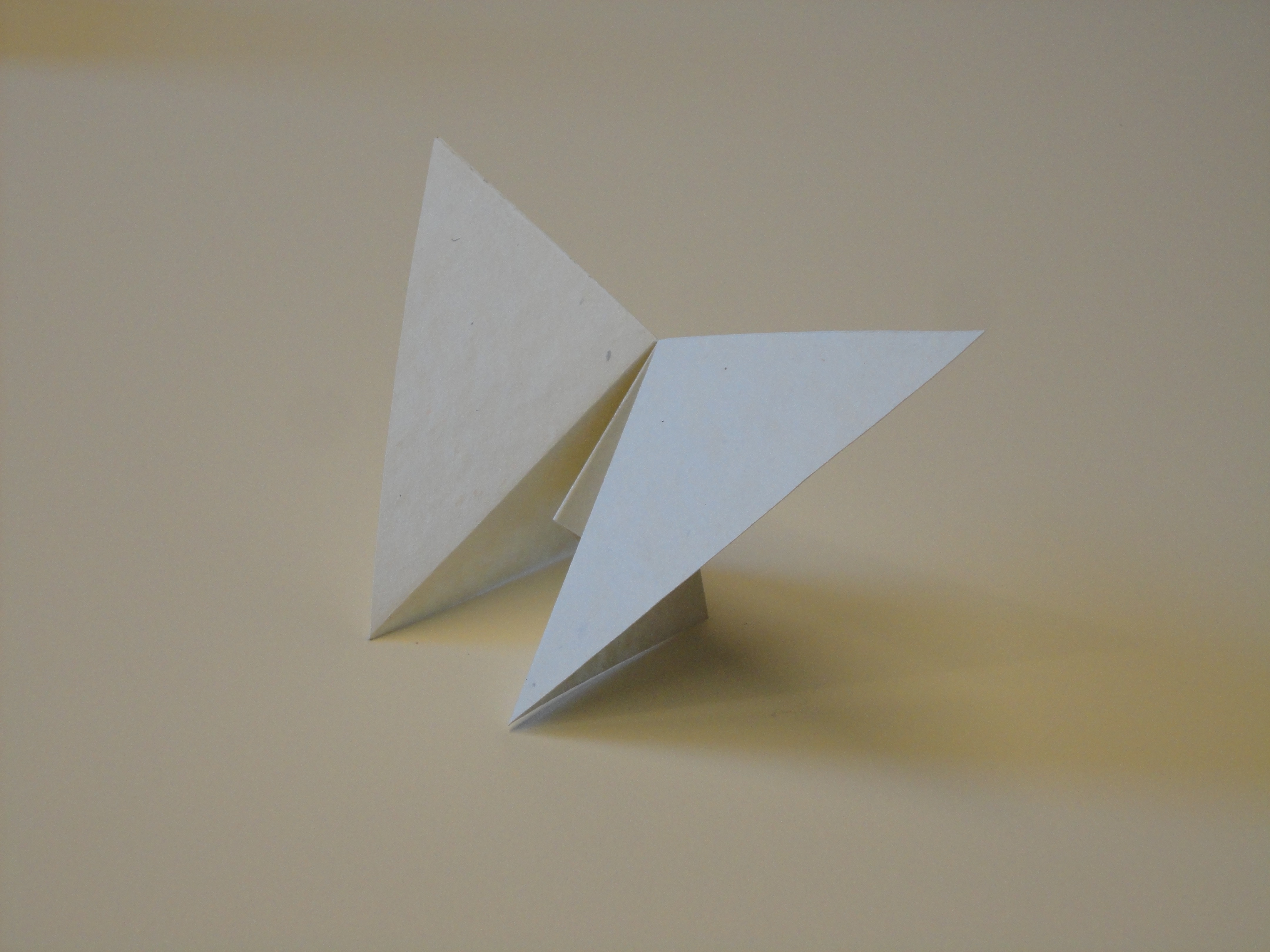 A prototype of one of the hand folded structures.